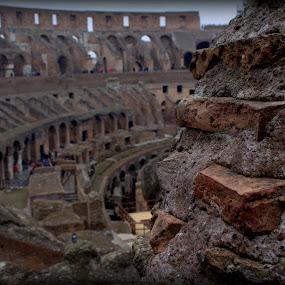 The Colosseum by Sraddheshnu Basu - Buildings & Architecture Public & Historical ( history, colosseum, rome, monument, italy )