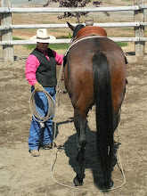 Photo: Give yourself a pretty big loop, resting on the ground behind the horse.