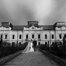 Wedding photographer Nenad Ivic (civi). Photo of 06.11.2018