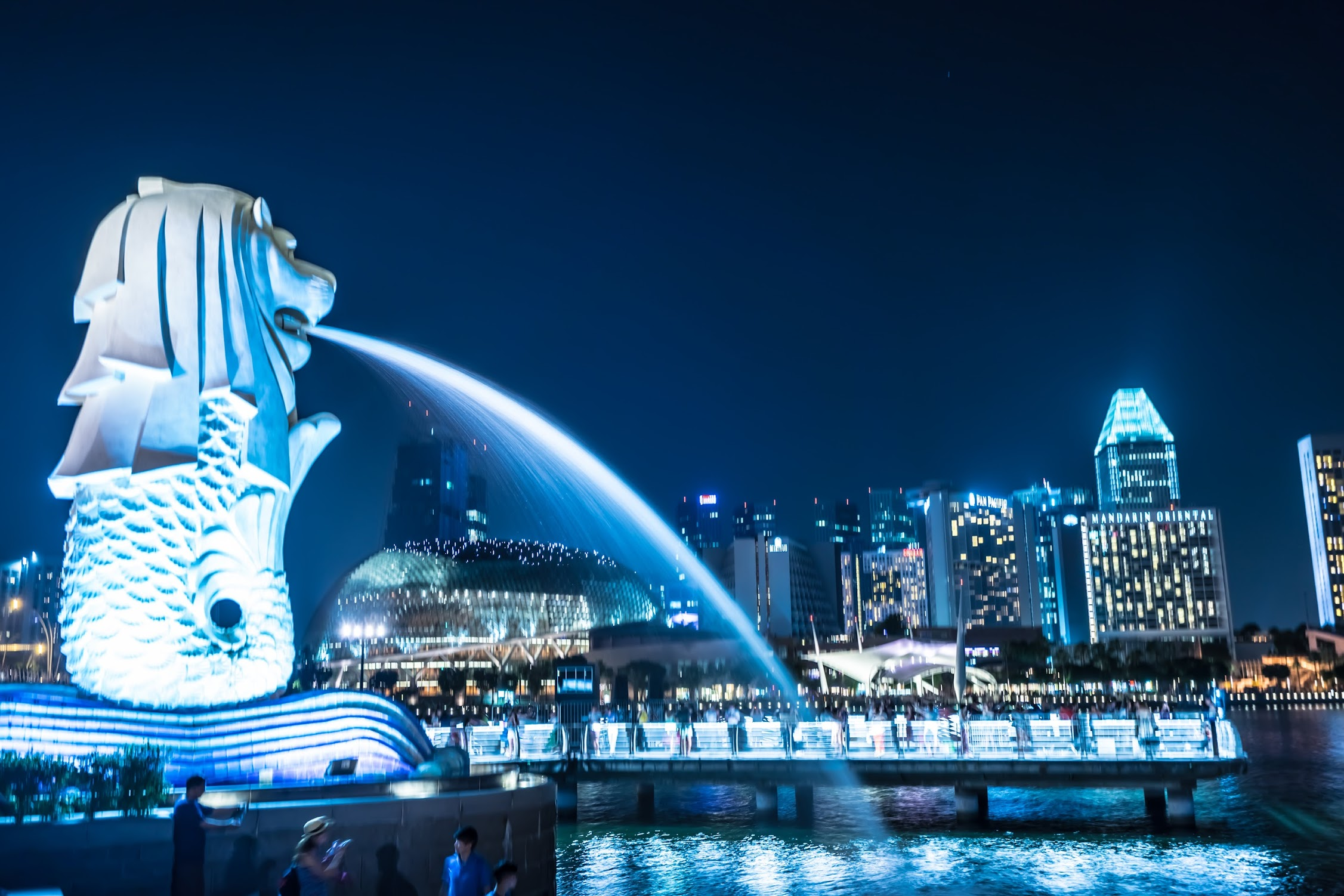 Singapore Merlion night view1