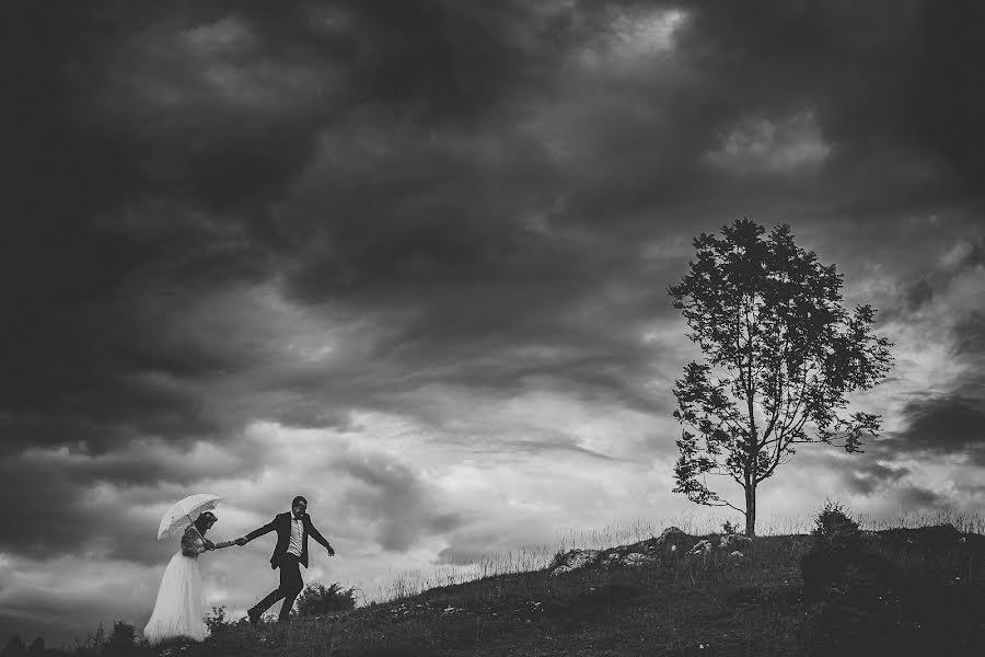 Wedding photographer Tim Demski (timdemski). Photo of 11.07.2017