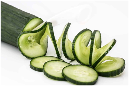 Can dogs eat Cucumbers Skin