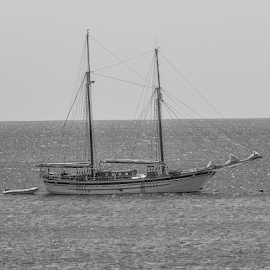 On the open sea by Garry Chisholm - Black & White Objects & Still Life ( yacht, canaries, lanzarote, water, boat, cruiser, sea )