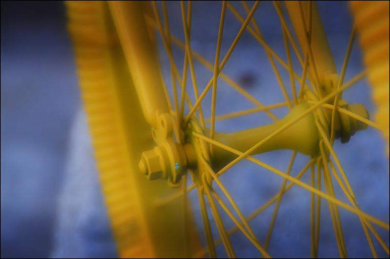 totally yellow di cristinababuder