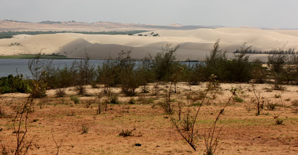Photo: Year 2 Day 21  -   The White Sand Dunes and Fresh Water Lake