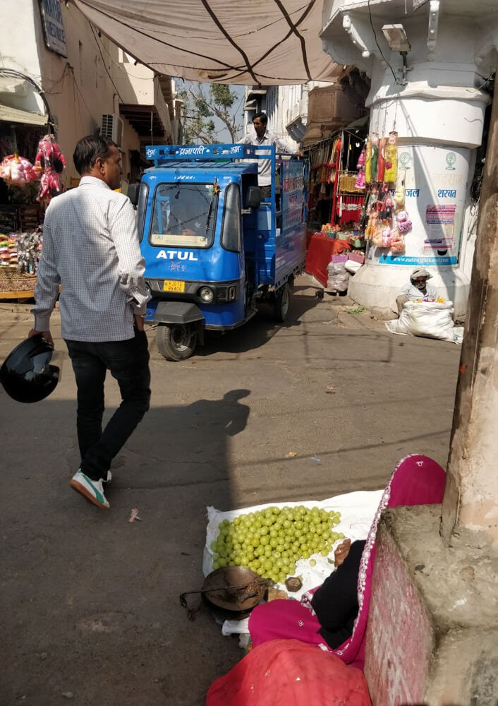 lady+selling+gooseberry+pushkar+market+rajasthan