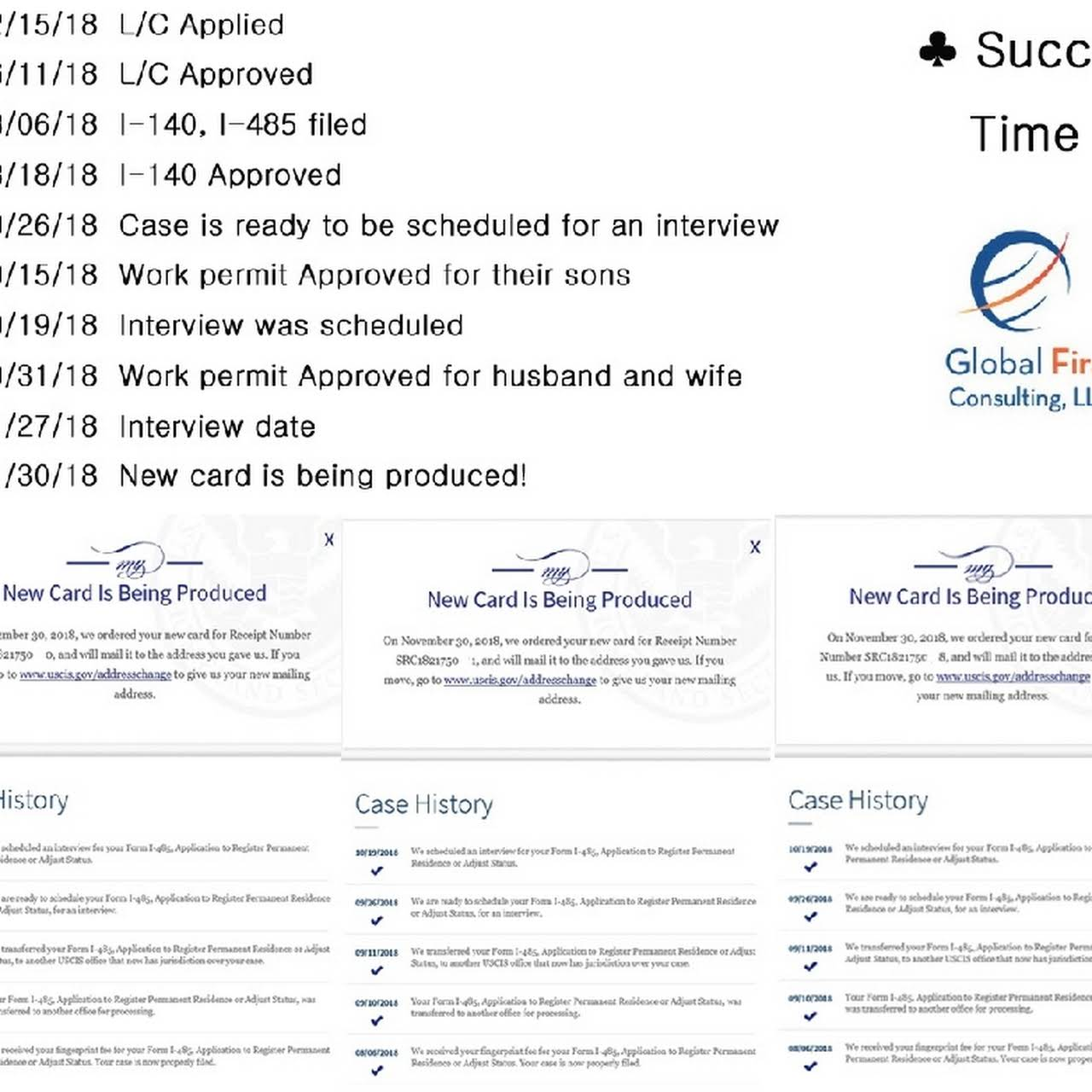 Global First Consulting LLC - Consultant in Suwanee
