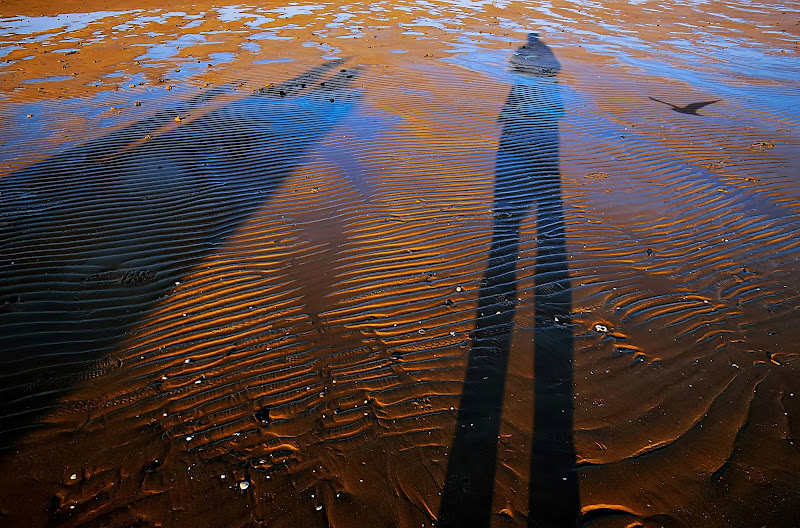 bassa marea di Marygio16