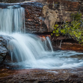 Cascading water by Joggie van Staden - Nature Up Close Water ( water, stream, mountain, nature, cascade, waterfall, close-up )
