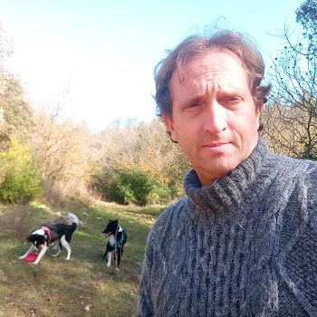 Foto de perfil de franck13