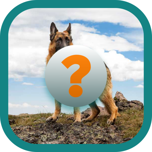 Dogs Quiz Game (game)