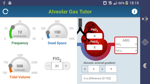 Alveolar Gas Tutor