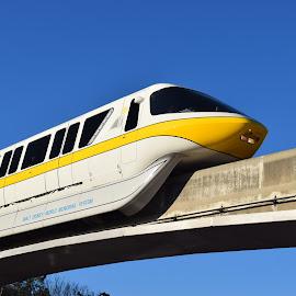 Walt Disney World Monorail by Keith Heinly - Transportation Trains ( monorail, florida, train, orlando, disney )