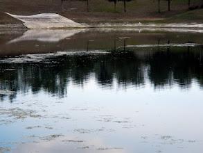 Photo: Lake Cortez - 2/2/2012 - Low water - weeds and algae