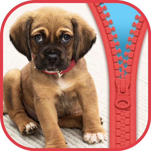 Dog Zipper Lock Screen Wallpapers and Backgrounds (app)
