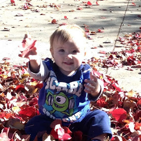 Fall Leaves by Brianna Janke - Babies & Children Babies