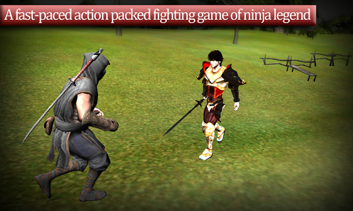 The last Ninja Assassinator