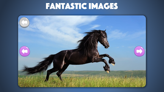 Horse and Pony jigsaw puzzle for kids and toddlers - náhled