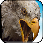 APK Game Birds Flying Eagle Simulator 3D for BB, BlackBerry