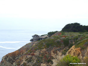 Photo: House hiding on cliff, Big Sur
