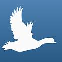 Bird Quiz Europe icon