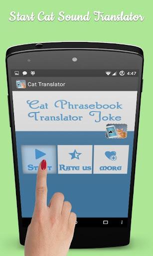 Cat Translator Prank