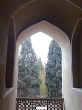 Photo: نمايي از باغ دولت آباد از قسمت فوقاني عمارت