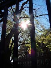 Photo: Winthrop House, Harvard University