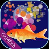 Scooping Goldfish Free Version