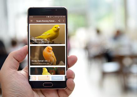 Suara Burung Kenari MP3 - náhled