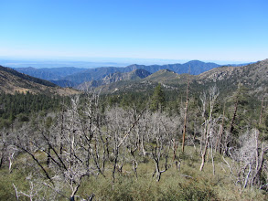 Photo: View southwest from South Mount Hawkins Road with damage from the 2002 Curve Fire in the foreground