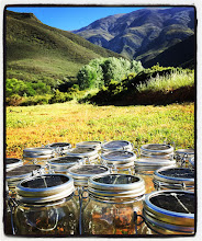 Photo: Our Consol Solar Jars powering up