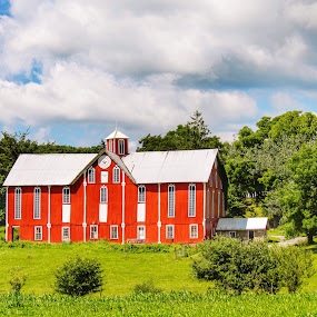 Shuttered barn by Pamela Hammer - Buildings & Architecture Architectural Detail ( farm, barn, country landscape, shutters,  )