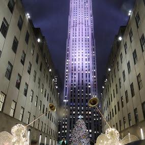 New York Christmas by Di Mc - Public Holidays Christmas ( lights, winter, xmas, christmas, new york city, rockefeller centre,  )
