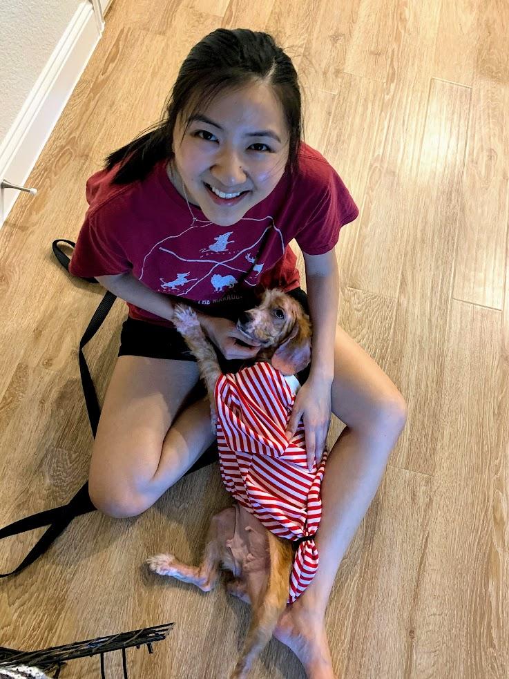 Dobby on lap