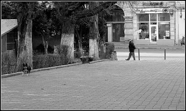 Photo: Parcul si Lapidariu inainte de reabilitarea din anul 2013 de pe Str. Bogdan Petriceicu Hasdeu - vedere Piata Republicii, Nr.30 - sursa facebook R.C https://www.facebook.com/photo.php?fbid=1881531708826974&set=a.1461038877542928.1073741826.100009104908756&type=3&theater