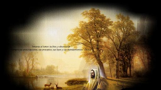 Meditaciones Catolicas