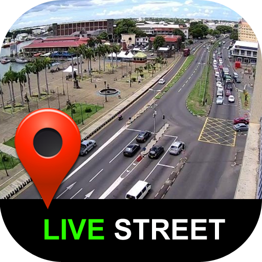 Street View Live Global Satellite Live Earth Map Revenue