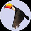 Animal Memory Educational Game icon