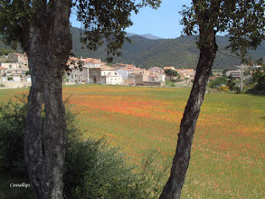 Photo: Cantallops (Alt Emporda)
