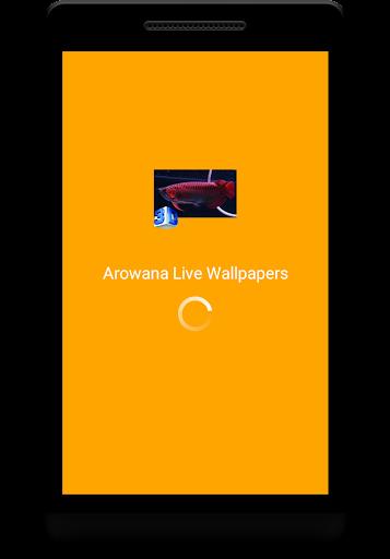 Arowana Live Wallpapers  screenshots 1
