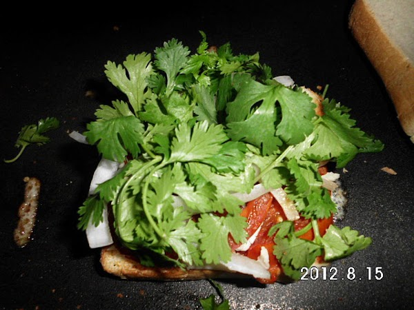Then onion slices and cilantro.