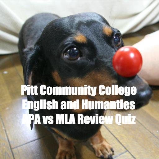 APA MLA Review Terms