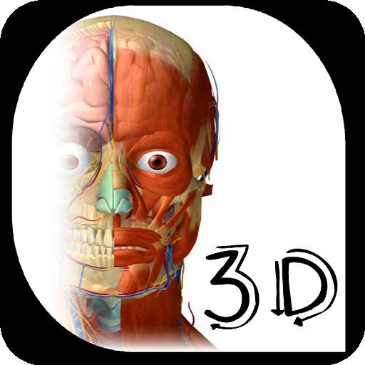 Baixar Anatomia e fisiologia humana 3D para Android