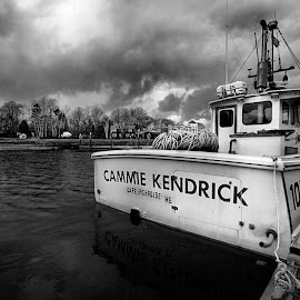 by John Larson - Black & White Landscapes