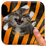 Game Scratch and guess the animal APK for Windows Phone