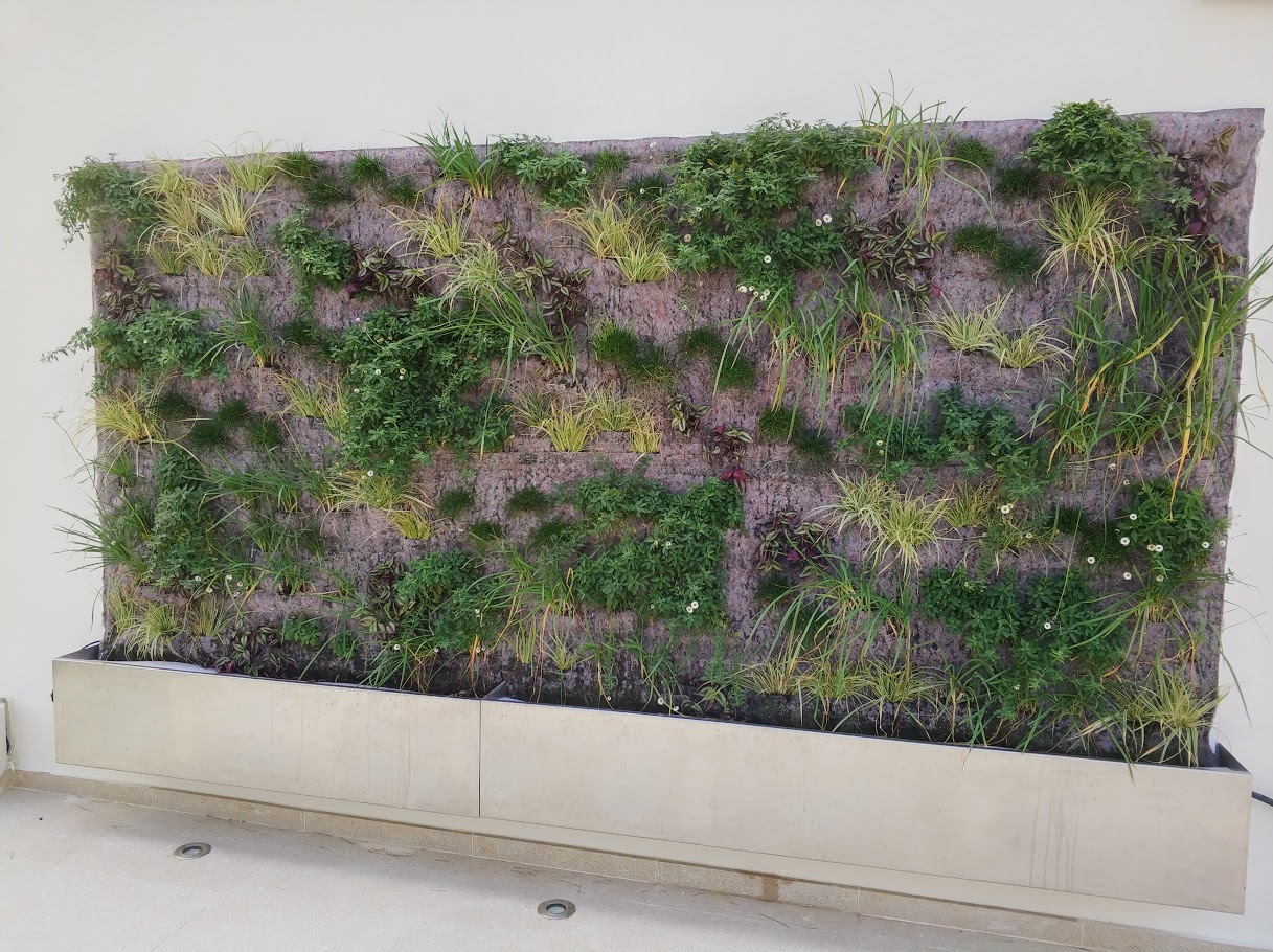 Jardines verticales F+P Mixtos