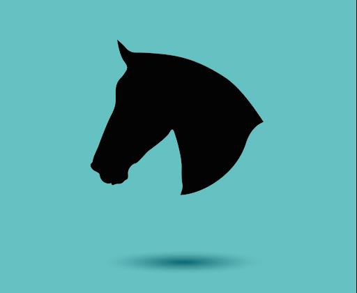 Pferd einzeln