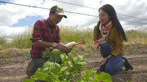 Asian Farm to Table thumbnail