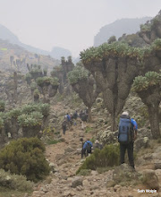 Photo: Surreal landscape, pulling into Barranco Camp - evening of day 4.